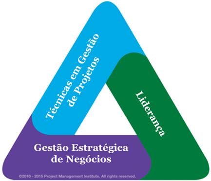 TrianguloDeTalentosPMI