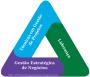 O novo Triângulo de Talentos doPMI